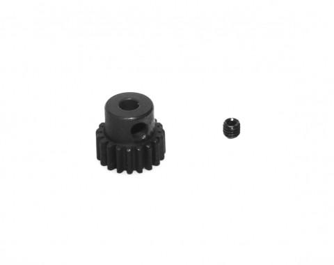 Ritzel 19Z 48dp - S10 122219